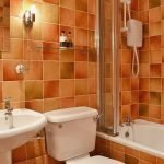 ty-nant-bathroom-900274